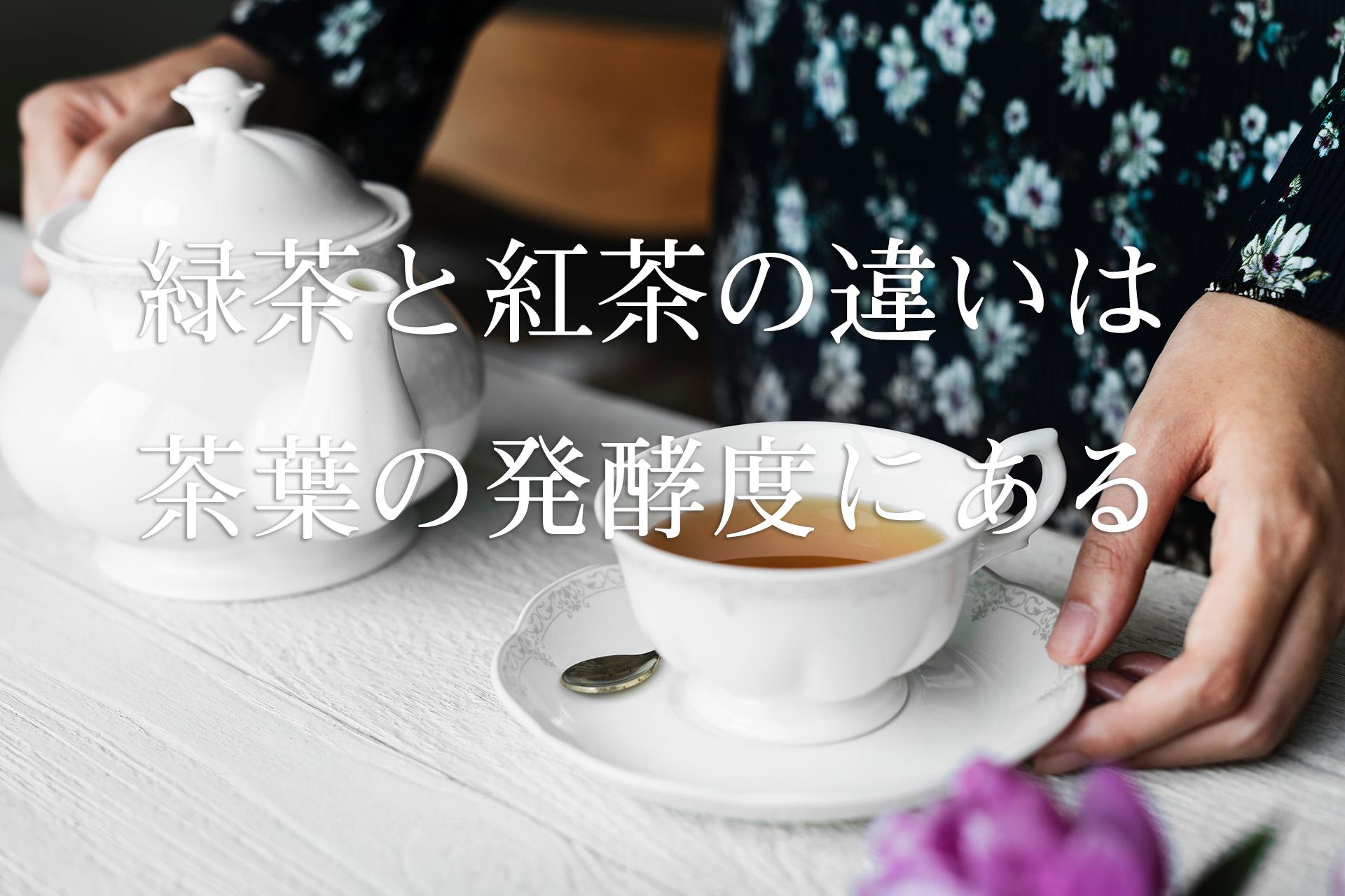 緑茶と紅茶の違いは茶葉の発酵度にある