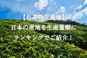 【お茶の生産地】日本の産地を生産量順にランキングでご紹介!